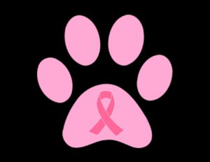 Real Panthers Wear Pink Walk