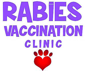 February Rabies Clinic for Dogs & Cats